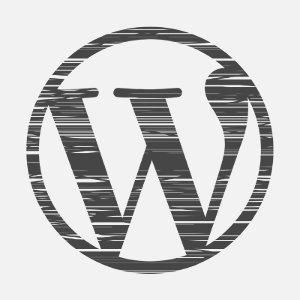 WordPress Installationsservice